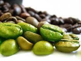 Green Coffee Plus gebruiksaanwijzing, hoe gebruiken?