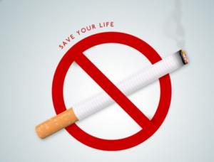Quit Smoking nederlands - bestellen, kruidvat